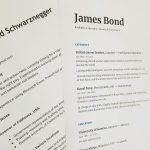 Le CV ou Curriculum Vitae : voici les bases d'un CV professionnel
